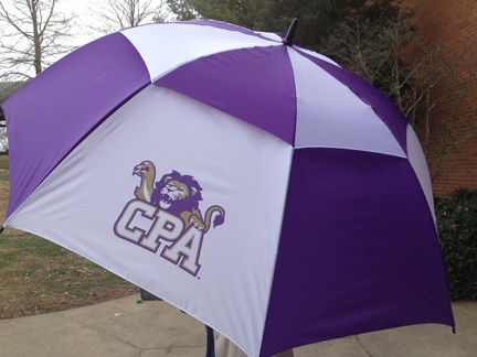 Roar Store_umbrella