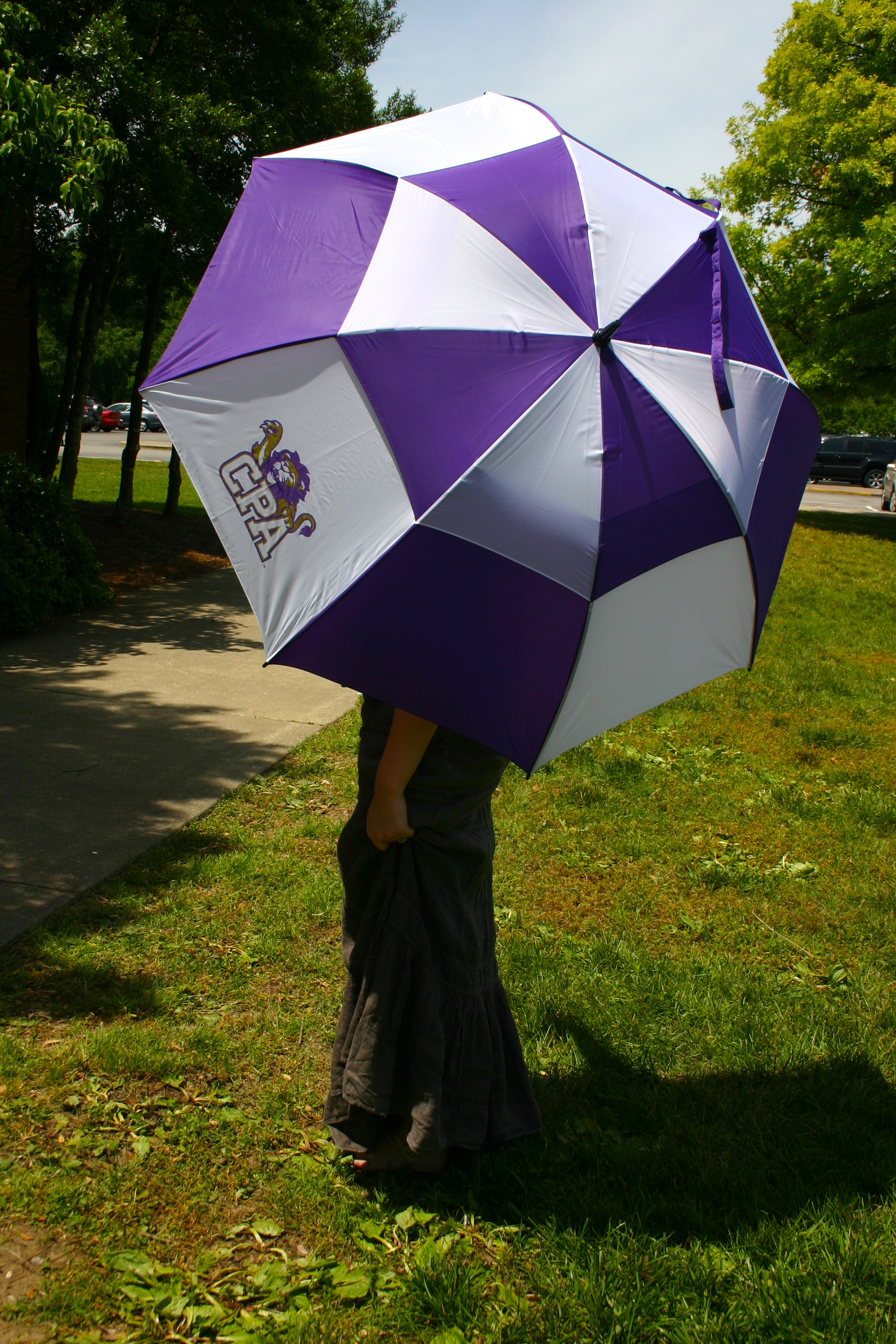 roar store item_umbrella - roar store item umbrella